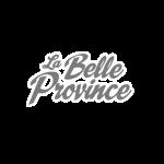 Belle-pro-gris-1